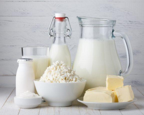 Produits laitiers : les mots | Lait du Forez Actus
