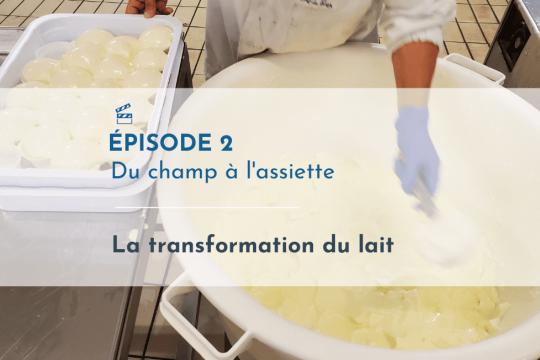 Episode 2_Du champ a l assiette_Laitduforez